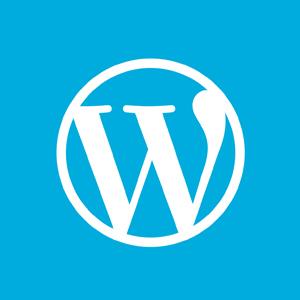 添加一个标准的wordpress meta-box模块
