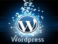 下载最新版本的WordPress和插件